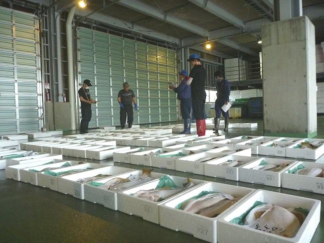 新星マリン漁業協同組合